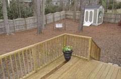 Before: Fenced backyard with pinestraw